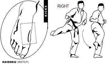 Karate: las patadas GedanMawashiGeriHeisokuDrawing_8Kyu